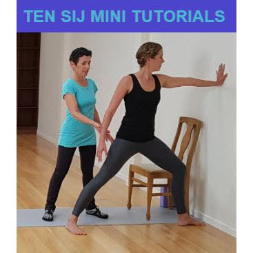 SIJ Ten Mini Videos Cover